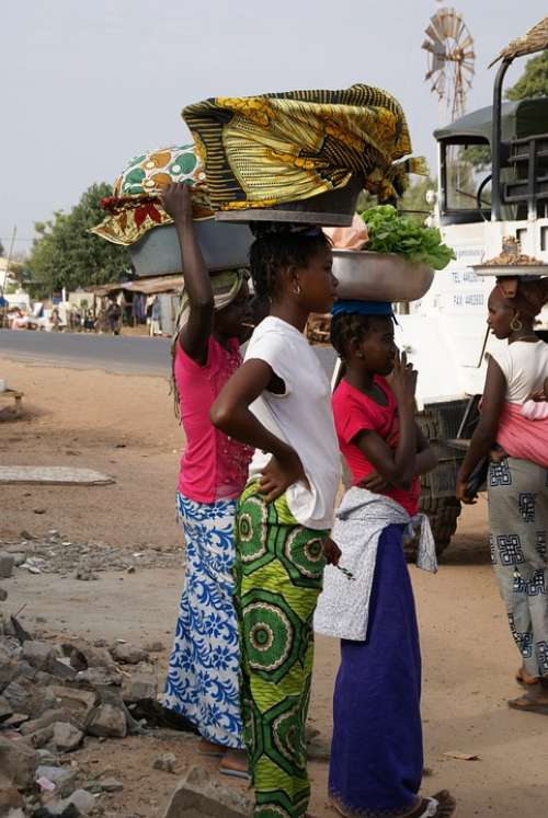Gambia Girls Fish Market Africa Daily Life