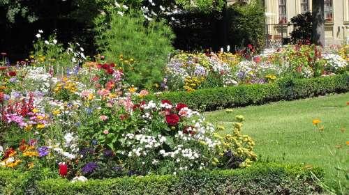 Garden Of Residence Würzburg Garden Flowers