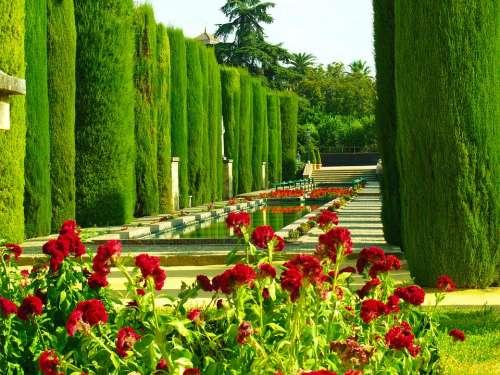 Gardens Cordoba Vegetation Flowers Pond Andalusia