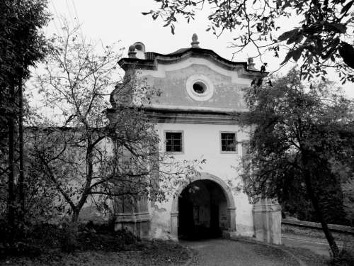 Gate Trees Black And White City Path Slovakia