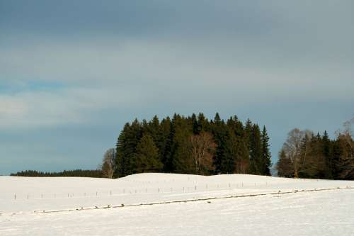 Germany Bavaria Nature Winter Snow Field Forest