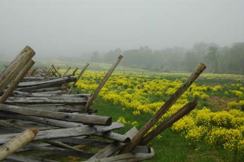 Gettysburg Nature History Fence Battle