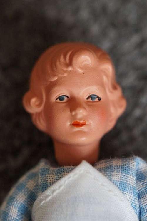 Girl Woman Portrait Face Head Features