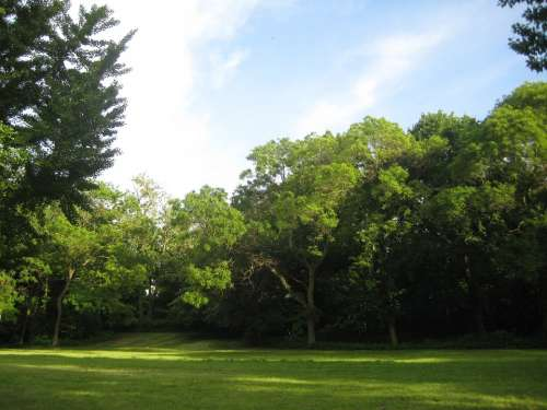 Glade Park Landscape