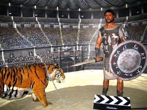 Gladiator Colosseum Gladiator Fight Fighting Scene