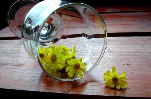 Glass Wooden Desk Chamomile Yellow Flowers