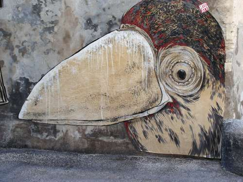 Grafiti Bird Road Art
