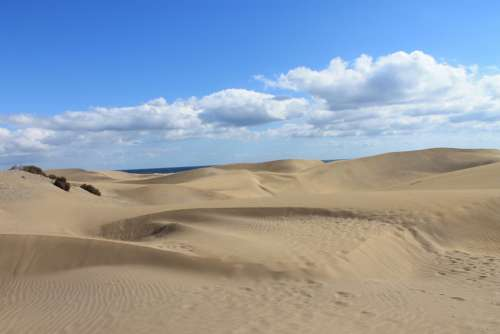 Gran Canaria Maspalomas Dunes Desert Sand Dunes