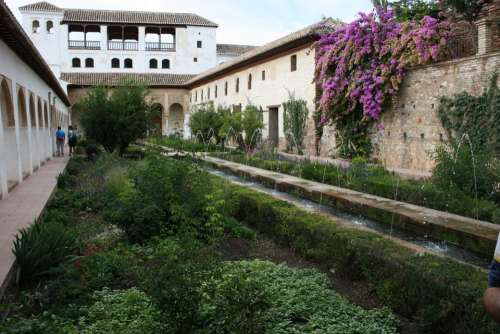 Granada Alhambra Patio De Aceqaia