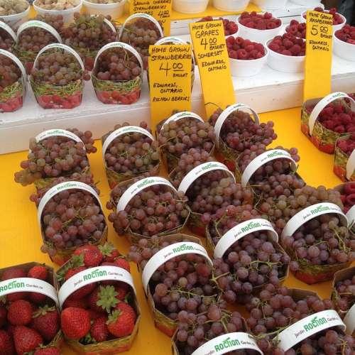 Grapes Fruit Market