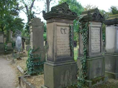 Grave Stones Jewish Cemetery Worms