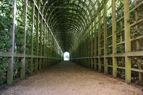 Green Tunnel Tunnel Garden Tunnel
