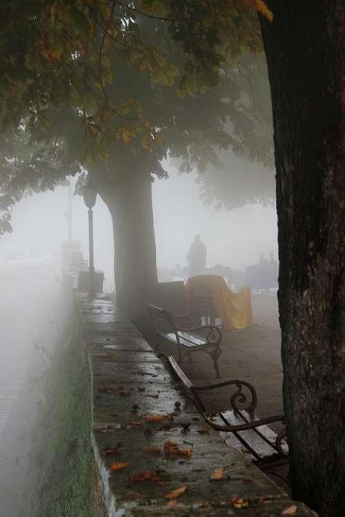 Groznjan Fog Tribulation Glimmer Of Hope