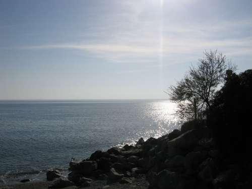 Guardia Piemontese Calabria Sea Beach Rocks Trees
