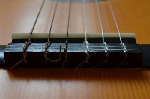 Guitar Close Up Musical Instrument Tailpiece Bridge
