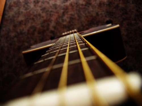 Guitar Strings Macro