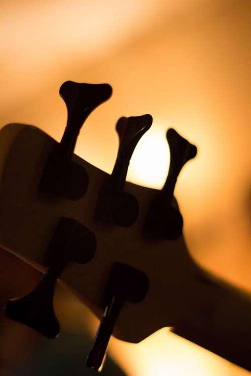 Guitar Music Musician