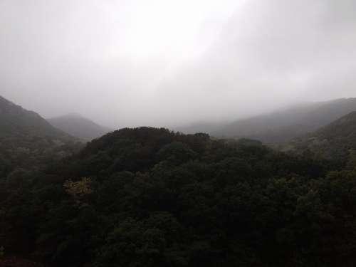 Gwanaksan Mountain Nature Fog Forest Spring Rain