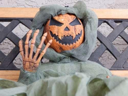 Halloween Skeleton Pumpkin Bony Fingers Scary