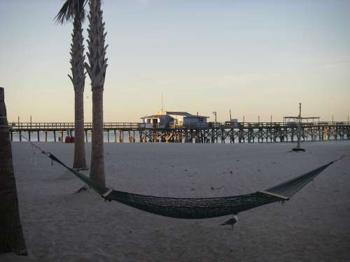 Hammock Beach Florida Gulf Coast Pier Palm Trees
