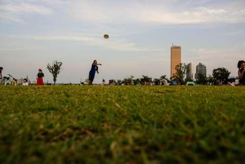 Han River Play Autumn