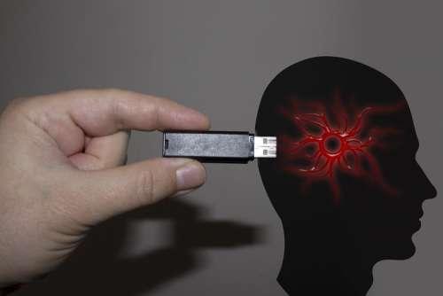 Hand Usb Stick Head Pychologie Feelings Suggestion