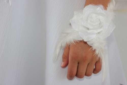 Hands Child Fingers White Roses