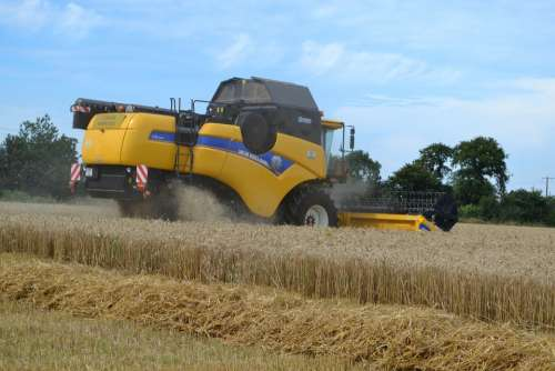 Harvester Wheat Harvest