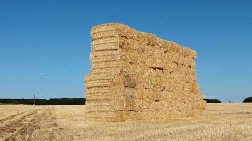 Hay Forage Balls Boots Pre Bale Of Hay Stacking