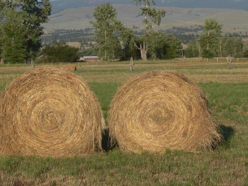 Haystack Montana Countryside Scene Natural
