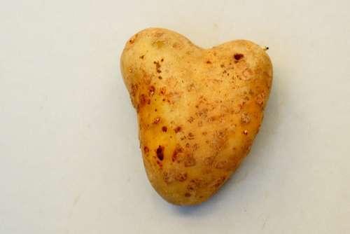 Heart Tuber Potato Love Symbol