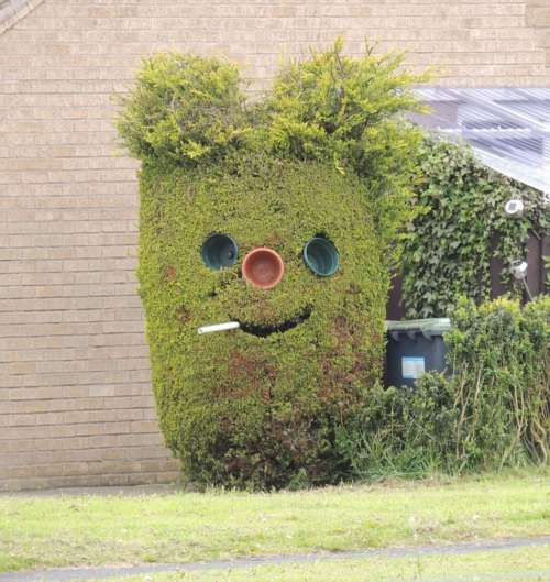 Hedge Funny Face Smoking Outdoor Character