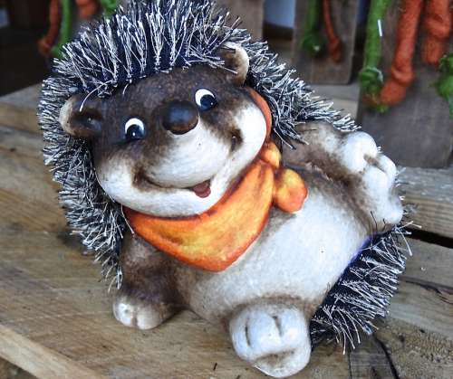 Hedgehog Stroll Rest Laugh Joy Happy Funny
