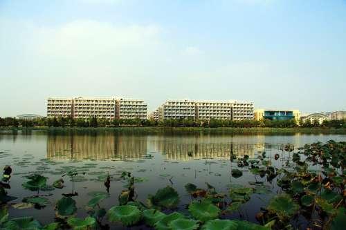High-Rise Building Housing Block Campus