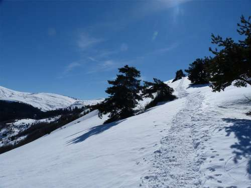 Hiking Mountain Winter Snow White Fir Alps