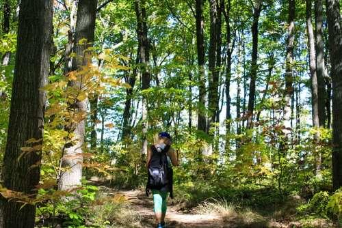 Hiking Trail Path Nature Girl Trekking Walk