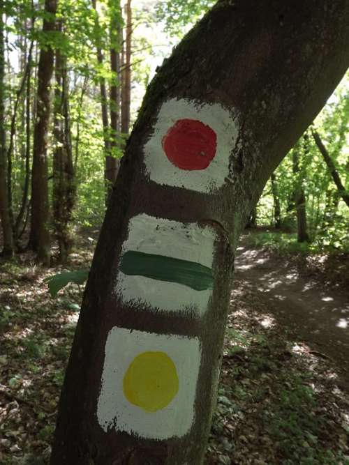 Hiking Trails Signpost Mark Waymarks Forest Nature