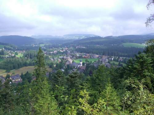 Hinterzarten Black Forest Outlook Firs Forests