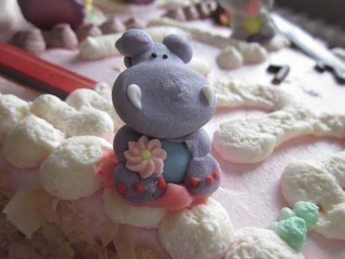 Hippopotamus Photo Birthday Cake Happy Hippo Cake