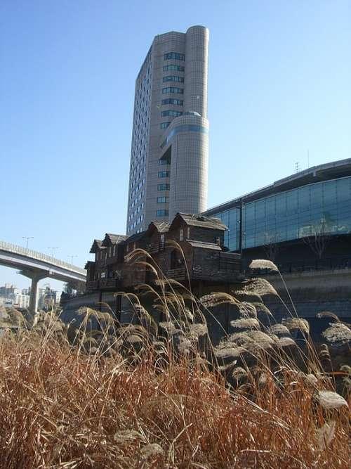 Hochaus Korea Seoul South Korea Building Cityscape