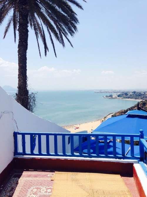 Vacations Tunisia Palm Sea Blue Balcony Cruise
