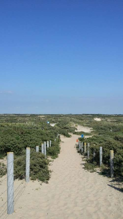Holland North Sea Zandvoort Beach Coast Dunes Sky