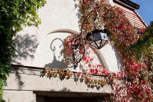House Lighting Input Wine Partner Lamp Light