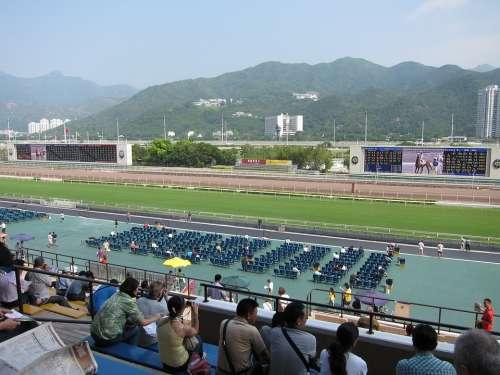 Hong Kong Horse Racing Horse Races
