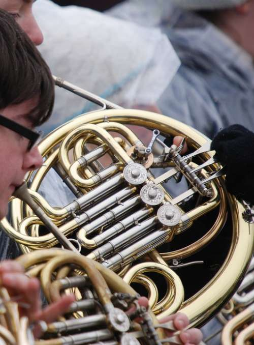 Horn French Horn Instrument Musical Music Outdoors