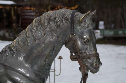 Horse Horse Head Portrait Sculpture Animal