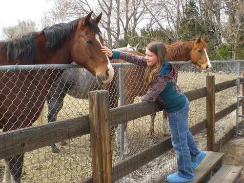 Horse Girl Friends