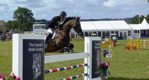 Horse Rider Jumping Sport Equine Action