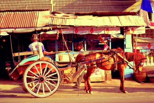 Horse Carriage Horse Rural Ancient Historic