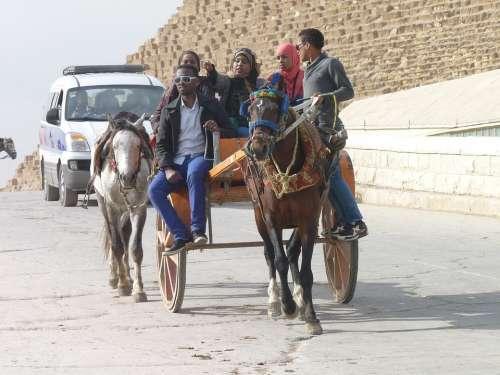 Horse Cart Egypt Tourism